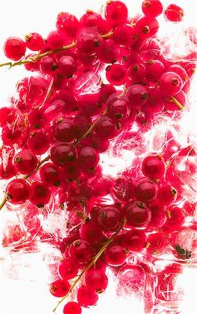 effect - Redcurrants on ice Stock Photo - Premium Royalty-Free, Code: 659-07599369