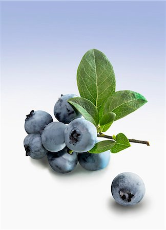 Blueberries with stems and leaves Stock Photo - Premium Royalty-Free, Code: 659-07610323