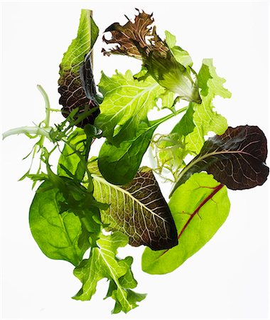 salad - Back lit lettuce leaves Stock Photo - Premium Royalty-Free, Code: 659-07959503