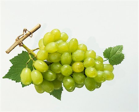 Green grapes with vine leaves and morning dew Stock Photo - Premium Royalty-Free, Code: 659-03524098