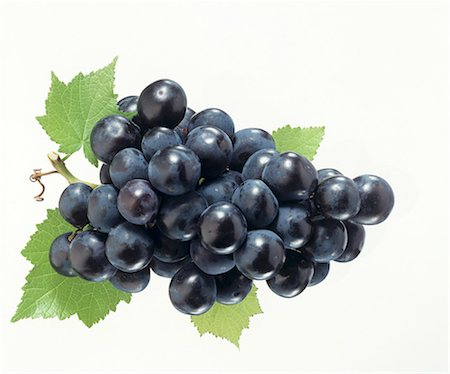 Black grapes with vine leaves Stock Photo - Premium Royalty-Free, Code: 659-03524099