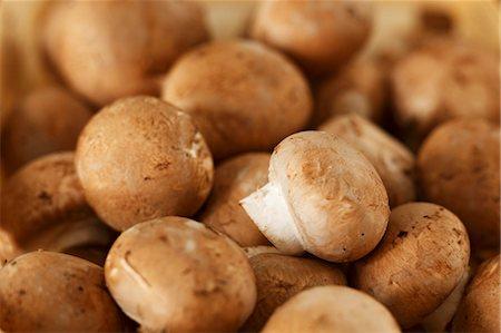 fungus - Chestnut mushrooms Stock Photo - Premium Royalty-Free, Code: 659-03537053