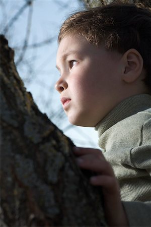 A young boy in a tree looking off in the distance Stock Photo - Premium Royalty-Free, Code: 653-05393215