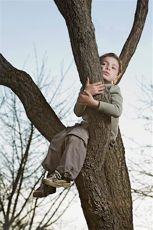 An unhappy boy sitting in a tree gripping a branch Stock Photo - Premium Royalty-Free, Code: 653-05393212