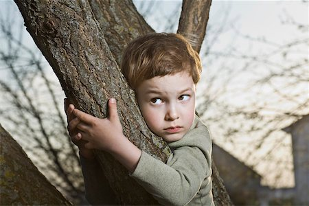 A young scared looking boy holding on to a tree branch Stock Photo - Premium Royalty-Free, Code: 653-05393230