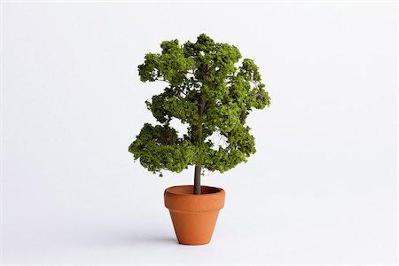 potted plant - A miniature potted plant Stock Photo - Premium Royalty-Free, Code: 653-05976178