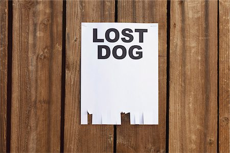 poster - A flyer posted on a wooden fence with the words LOST DOG on it Stock Photo - Premium Royalty-Free, Code: 653-05976755