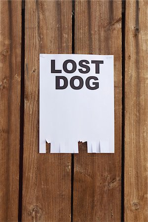 poster - A flyer posted on a wooden fence with the words LOST DOG on it Stock Photo - Premium Royalty-Free, Code: 653-05976752