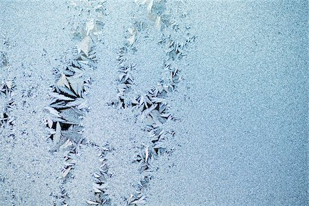 Feathered ice crystals Stock Photo - Premium Royalty-Free, Code: 653-05976872