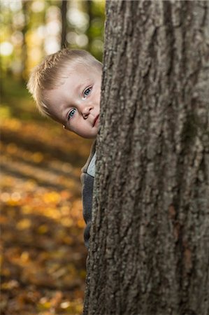 shy baby - A young boy peeking from behind a tree trunk Stock Photo - Premium Royalty-Free, Code: 653-06534647