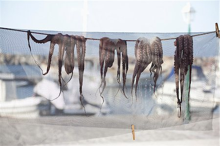 refraction - Octopuses drying on line beside harbor in Paros, Greece Stock Photo - Premium Royalty-Free, Code: 653-06535007