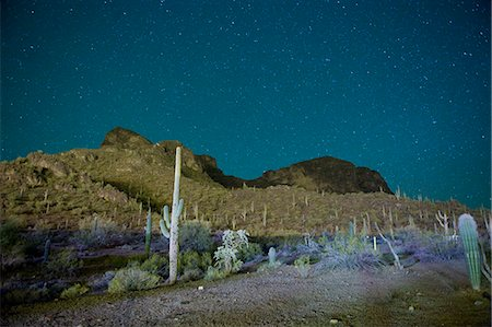 space - Starry night over cactus filled desert in Tucson, Arizona, USA Stock Photo - Premium Royalty-Free, Code: 653-07233984