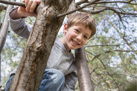A young cheerful boy climbing a tree Stock Photo - Premium Royalty-Free, Code: 653-07233991