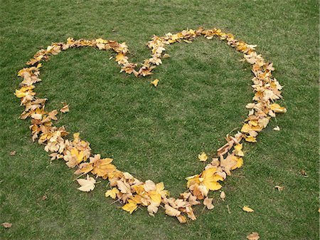 shape - Heart shape made from autumn leaves on grass Stock Photo - Premium Royalty-Free, Code: 653-07539050