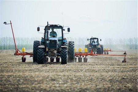 Combine harvester harvesting field Stock Photo - Premium Royalty-Free, Code: 653-07707833