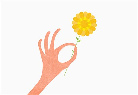 flower illustration - Hand holding yellow against white background Stock Photo - Premium Royalty-Free, Code: 653-07708082