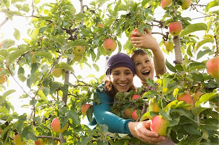 family apple orchard - Cheerful mother and son picking apples at orchard Stock Photo - Premium Royalty-Free, Code: 653-08382562