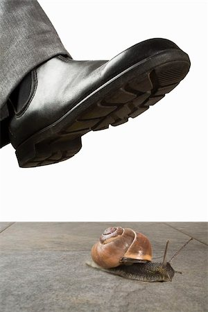 dangerous accident - A foot above a snail Stock Photo - Premium Royalty-Free, Code: 653-03079700