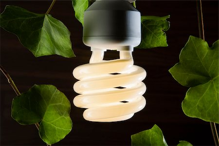 An illuminated energy saving light bulb surrounded by ivy leaves Stock Photo - Premium Royalty-Free, Code: 653-03079747