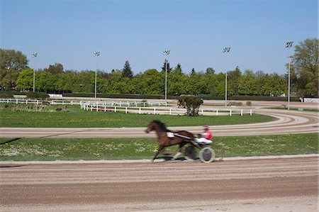 Harness racer on a track Stock Photo - Premium Royalty-Free, Code: 653-03576228