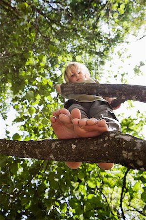 View from below of a child standing in a tree Stock Photo - Premium Royalty-Free, Code: 653-03843295