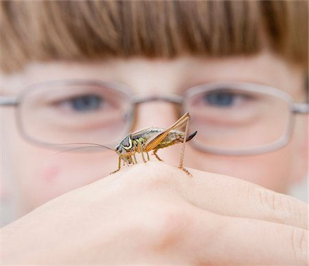 A cricket on the hand of a boy Stock Photo - Premium Royalty-Free, Code: 653-03843293