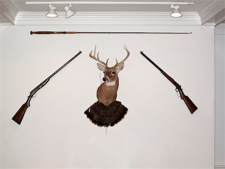 A hunting trophy in the middle of two old-fashioned rifles and a fishing rod Stock Photo - Premium Royalty-Free, Code: 653-03843806