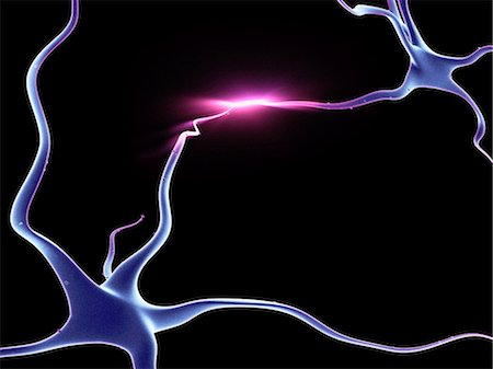 sparks illustration - Nerve cells, neurons connected Stock Photo - Premium Royalty-Free, Code: 679-04249836