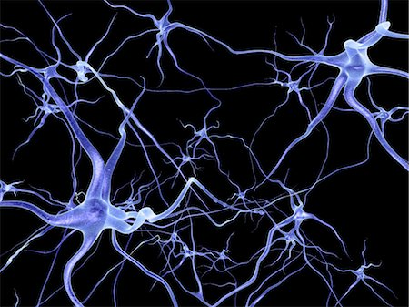 synapse - Neural network, computer artwork Stock Photo - Premium Royalty-Free, Code: 679-04249842