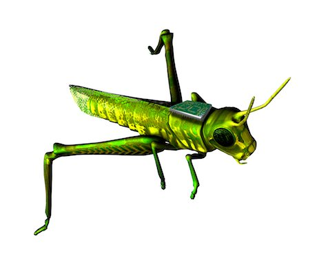 Insect spy, conceptual artwork Stock Photo - Premium Royalty-Free, Code: 679-04250255