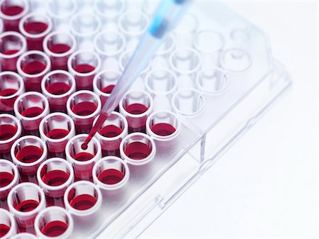 Blood samples Stock Photo - Premium Royalty-Free, Code: 679-04250554