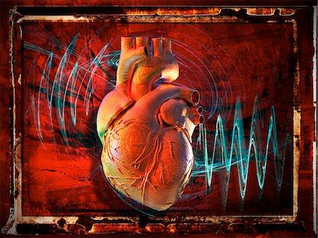 Human heart, artwork Stock Photo - Premium Royalty-Free, Code: 679-04250670