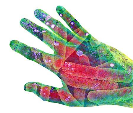E. coli bacteria on skin, artwork Stock Photo - Premium Royalty-Free, Code: 679-04251407