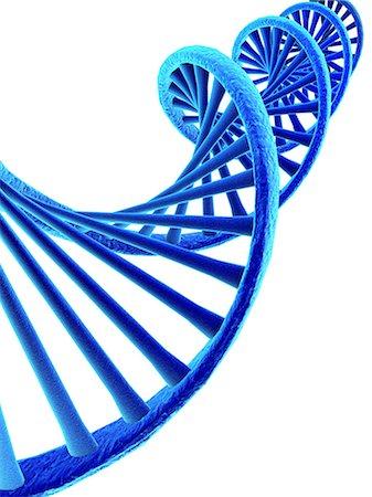 pair - DNA, artwork Stock Photo - Premium Royalty-Free, Code: 679-05797109