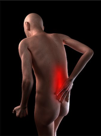 Back pain, conceptual artwork Stock Photo - Premium Royalty-Free, Code: 679-05797983