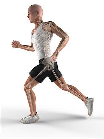 runner (male) - Jogger, artwork Stock Photo - Premium Royalty-Free, Code: 679-05798659