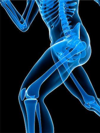 Running skeleton, artwork Stock Photo - Premium Royalty-Free, Code: 679-05798666