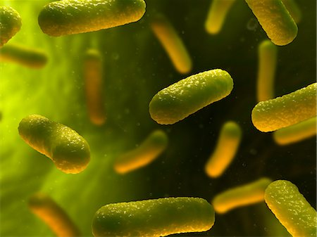 Bacterial infection, artwork Stock Photo - Premium Royalty-Free, Code: 679-05798987