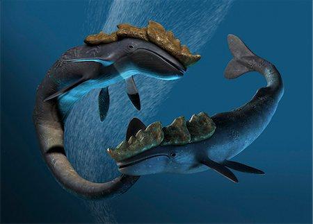 prehistoric - Leviathan sea monsters, computer artwork. Stock Photo - Premium Royalty-Free, Code: 679-05996213