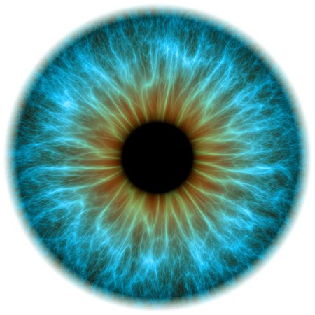Blue eye. Computer artwork of a close-up of the iris and pupil of an eye. The iris, a coloured muscular ring, regulates the amount of light that enters the eye through the pupil (black). Stock Photo - Premium Royalty-Free, Code: 679-05996615