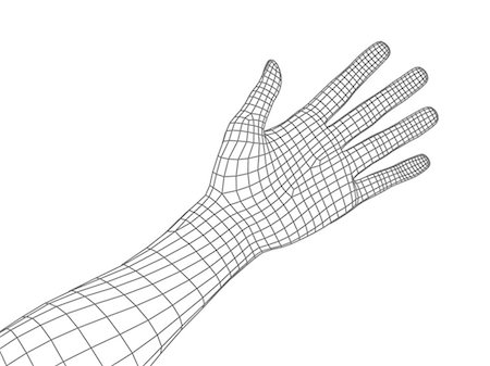 silhouette hand - Computer artwork of a human hand and arm depicted in wireframe style. Stock Photo - Premium Royalty-Free, Code: 679-05992462