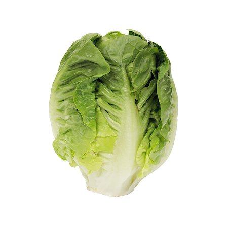 Lettuce 'Little Gem'. Stock Photo - Premium Royalty-Free, Code: 679-05992493