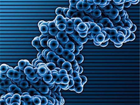 pair - DNA molecule. Molecular model of DNA (deoxyribonucleic acid). Stock Photo - Premium Royalty-Free, Code: 679-05992569