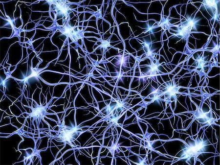 spark - Nerve cells. Computer artwork of nerve cells or neurons firing. Stock Photo - Premium Royalty-Free, Code: 679-06198229