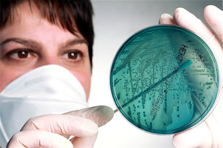 Microbiology research. Stock Photo - Premium Royalty-Free, Code: 679-06199112