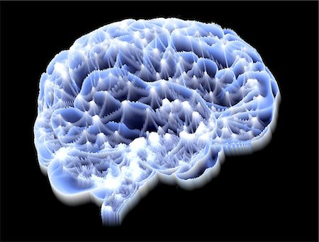 Neural network. Computer artwork of a brain in side view, with the brain's neural network represented by lines and flashes. A neural network is made up of nerve cells (neurons). Stock Photo - Premium Royalty-Free, Code: 679-06199205