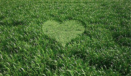 Heart-shaped grass, computer artwork. Stock Photo - Premium Royalty-Free, Code: 679-06673923