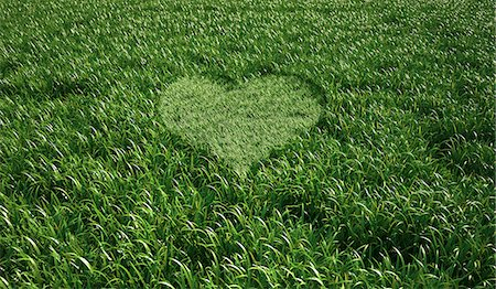 shape - Heart-shaped grass, computer artwork. Stock Photo - Premium Royalty-Free, Code: 679-06673923