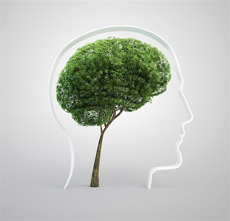 Brain-shaped tree, computer artwork. Stock Photo - Premium Royalty-Free, Code: 679-06755797