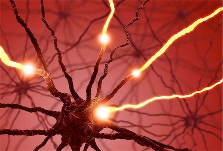 synapse - Neural network, computer artwork. Stock Photo - Premium Royalty-Free, Code: 679-06780966